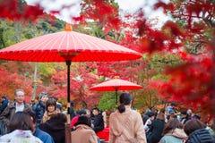 Κιότο, Ιαπωνία - 17 Νοεμβρίου 2017: Τουρίστες που κάθονται και που πίνουν Στοκ φωτογραφία με δικαίωμα ελεύθερης χρήσης