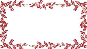 Κλάδοι και κόκκινα φύλλα που αυξάνονται σε ένα πλαίσιο στο άλφα κανάλι απόθεμα βίντεο