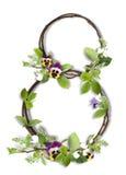 κλάδοι οκτώ αριθμός φύλλων λουλουδιών Στοκ Εικόνες