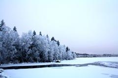 Κλάδοι που καλύπτονται με τον όμορφο άσπρο χειμώνα hoarfrost Στοκ Εικόνες