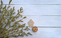 Κλάδοι στους παλαιούς ξύλινους πίνακες Τοπ όψη Ένα σύμβολο της αναγέννησης στοκ εικόνα με δικαίωμα ελεύθερης χρήσης