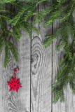 Κλάδοι του FIR και κόκκινο snowflake διακοσμήσεων Στοκ φωτογραφία με δικαίωμα ελεύθερης χρήσης