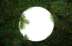 Κλάδοι του FIR με το διάστημα αντιγράφων για το κείμενό σας Δημιουργική έννοια φύσης του νέου έτους Το ελάχιστο επίπεδο βρέθηκε Στοκ φωτογραφίες με δικαίωμα ελεύθερης χρήσης