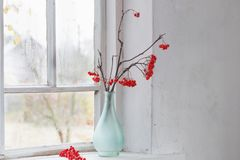 Κλάδοι του Rowan στο windowsill Στοκ Φωτογραφίες