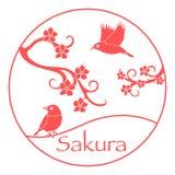 Κλάδοι Sakura και ιαπωνικά πουλιά Φύση της Ιαπωνίας διανυσματική απεικόνιση