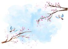 Κλάδοι sakura Watercolor στοκ φωτογραφίες με δικαίωμα ελεύθερης χρήσης