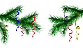 Κλάδος από το δέντρο του χριστουγεννιάτικου δέντρου Δέντρο κωνοφόρων διανυσματική απεικόνιση