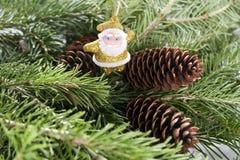 Κλάδος δέντρων με Άγιο Βασίλη Χριστούγεννα ή νέες κάρτες έτους Στοκ Φωτογραφίες