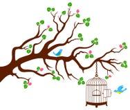 Κλάδος δέντρων με κλουβί πουλιών και δύο πουλιά Στοκ εικόνα με δικαίωμα ελεύθερης χρήσης