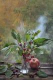 Κλάδος δέντρων της Apple με τα μικρά μήλα σε ένα βάζο γυαλιού Στοκ φωτογραφία με δικαίωμα ελεύθερης χρήσης
