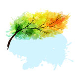 Κλάδος δέντρων φθινοπώρου Στοκ φωτογραφίες με δικαίωμα ελεύθερης χρήσης