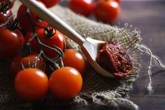 Κλάδος με τις φρέσκες ντομάτες κερασιών Ώριμες κόκκινες ντομάτες Ντομάτες Α Στοκ φωτογραφίες με δικαίωμα ελεύθερης χρήσης