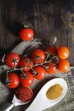 Κλάδος με τις φρέσκες ντομάτες κερασιών Ώριμες κόκκινες ντομάτες Ντομάτες Α Στοκ Εικόνα