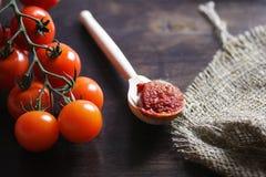 Κλάδος με τις φρέσκες ντομάτες κερασιών Ώριμες κόκκινες ντομάτες Ντομάτες Α Στοκ Εικόνες