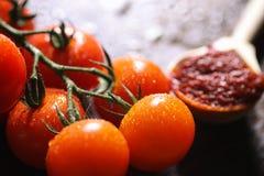 Κλάδος με τις φρέσκες ντομάτες κερασιών Ώριμες κόκκινες ντομάτες Ντομάτες Α Στοκ εικόνες με δικαίωμα ελεύθερης χρήσης