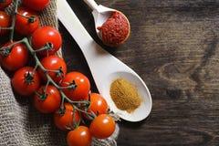 Κλάδος με τις φρέσκες ντομάτες κερασιών Ώριμες κόκκινες ντομάτες Ντομάτες Α Στοκ εικόνα με δικαίωμα ελεύθερης χρήσης
