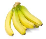 κλάδος μπανανών που απομονώνεται Στοκ Φωτογραφίες