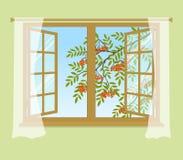 Κλάδος του Rowan έξω από το παράθυρο Στοκ Φωτογραφίες