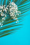 Κλάδος φοινικών και άσπρα λουλούδια στο μπλε υπόβαθρο στοκ φωτογραφίες