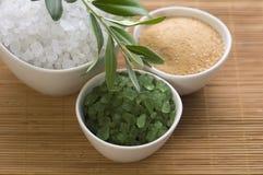 κλάδος φρέσκια olive salt spa λουτρ στοκ φωτογραφίες