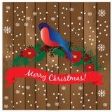 κλάδος bullfinch Ρωσία ουρανός santa του Klaus παγετού Χριστουγέννων καρτών τσαντών Στοκ φωτογραφία με δικαίωμα ελεύθερης χρήσης