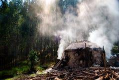 Κλίβανος άνθρακα στοκ εικόνες