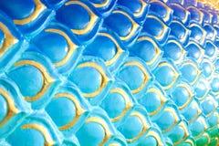 Κλίμακας πράσινο κίτρινο όμορφο υπόβαθρο aqua naga ζωηρόχρωμο μπλε Στοκ φωτογραφίες με δικαίωμα ελεύθερης χρήσης