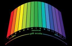 Κλίμακα της αξίας pH για τις όξινες και αλκαλικές λύσεις, infographic ισορροπία όξινος-βάσεων διανυσματική απεικόνιση