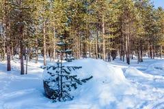 Κλίσεις χιονιού στοκ εικόνες