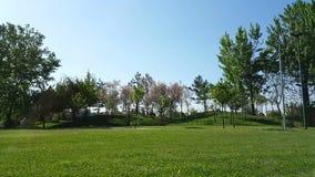 Κλίση καμερών από τη χλόη στον ουρανό σε ένα πάρκο απόθεμα βίντεο
