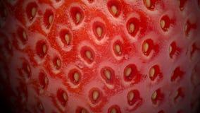 Κλίση φραουλών - κλείστε επάνω φιλμ μικρού μήκους