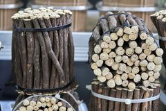 Κλαδάκια Icorice στον τοπικό στάβλο αγοράς Στοκ Φωτογραφία