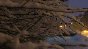 Κλαδίσκος χιονιού που ταλαντεύεται στον αέρα αργά τη νύχτα στα πλαίσια της διάβασης των αυτοκινήτων φιλμ μικρού μήκους