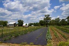 Κλασικοί αγρόκτημα και κήπος Amish Στοκ φωτογραφία με δικαίωμα ελεύθερης χρήσης