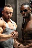 Κλασικός Ευρώπη Bodybuilding διαγωνισμός του Arnold Στοκ εικόνες με δικαίωμα ελεύθερης χρήσης