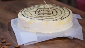 Κλασικός esterhazy που συσσωματώνεται διακοσμημένος με το άσπρο λούστρο κρέμας σοκολάτας και το σκοτεινό ιστό αράχνης σοκολάτας απόθεμα βίντεο