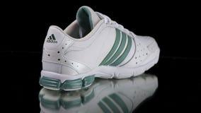 Κλασικό πάνινο παπούτσι της Adidas Τοπ όψη απόθεμα βίντεο