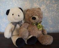 Κλασικό Teddy αντέχει ενάντια σε έναν μπλε τοίχο καφετή και Camo με τη γραπτή αρκούδα στοκ εικόνες