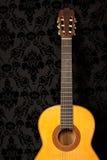 κλασσική κιθάρα Στοκ Εικόνα