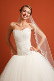 Κλασσική νύφη Στοκ εικόνα με δικαίωμα ελεύθερης χρήσης