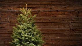 Κλασσικό χριστουγεννιάτικο δέντρο έλατου μπροστά από έναν εκλεκτής ποιότητας ξύλινο τοίχο Στοκ Φωτογραφίες