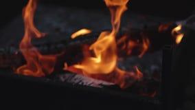 Κλείστε αυξημένος στο ξύλινο κάψιμο αργά με την πορτοκαλιά φλόγα πυρκαγιάς απόθεμα βίντεο