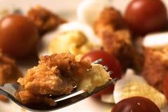Κλείστε αυξημένος της λωρίδας κοτόπουλου εκμετάλλευσης δικράνων Σαλάτα στο υπόβαθρο στοκ εικόνες