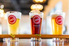 Κλείστε αυξημένος του ποτηριού τρία της κρύας φρέσκιας μπύρας στοκ εικόνα με δικαίωμα ελεύθερης χρήσης