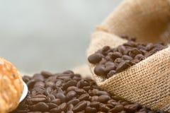 Κλείστε αυξημένος του φασολιού καφέ Στοκ Εικόνα