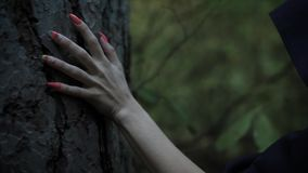 Κλείστε αυξημένος του χεριού με τα μακριά νύχια, μια γυναίκα αφές στις μαύρες επενδυτών ο φλοιός ενός δέντρου το βράδυ φιλμ μικρού μήκους