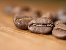 Κλείστε αυξημένος των φρέσκων φασολιών καφέ στοκ εικόνα