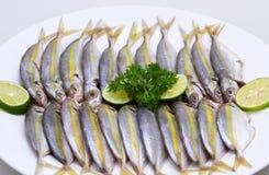 Κλείστε επάνω αλιευμένος μαριναρισμένος στο πιάτο στοκ φωτογραφία