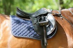 Κλείστε επάνω ενός αλόγου λιμένων κατά τη διάρκεια του ανταγωνισμού κάτω από τη σέλα υπαίθρια στοκ εικόνα