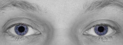 Κλείστε επάνω ενός ζευγαριού των μπλε ματιών από ένα άτομο στοκ εικόνα με δικαίωμα ελεύθερης χρήσης